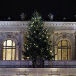 Der Weihnachtsbaum der Wuppertaler Stadthalle © mw